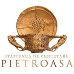 VIN DE LA Pietroasele, primul ACADEMIC DIN ROMÂNIA
